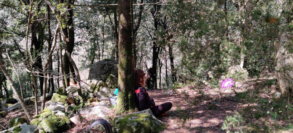 desconexión, naturaleza, silencio en el bosque y en la naturaleza. Barcelona
