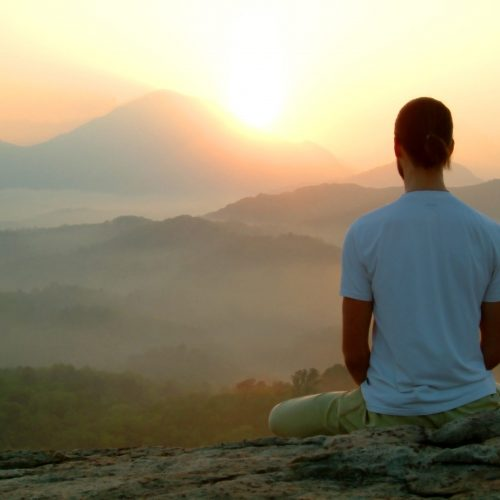 mindfulness contemplación y naturaleza